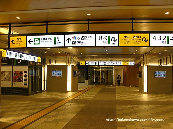 Niigata5170518