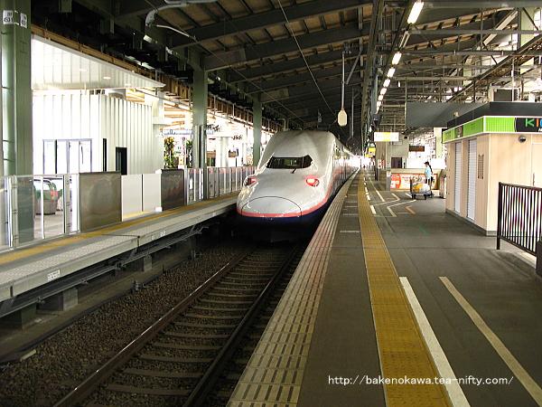 上越新幹線10-11番ホームで回送待機中のE4系電車その1