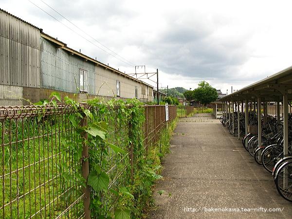 旧蒲原鉄道のホーム跡の駐輪場