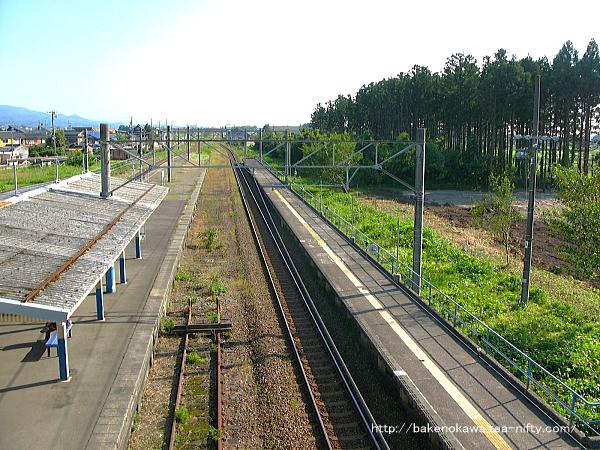 平木田駅裏の伐採された防風林その2